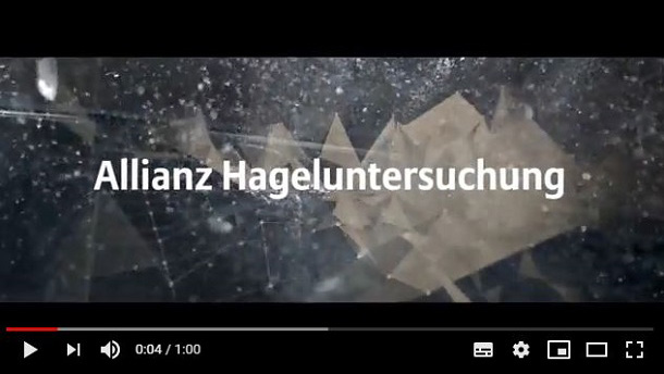 Video-Preview Hageluntersuchung